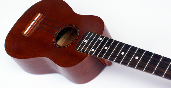 Learn The Ukulele Fast - Play Your First Song Today!